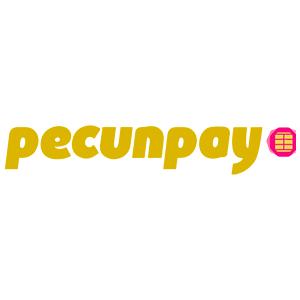 pecunpayo - NUESTROS SERVICIOS